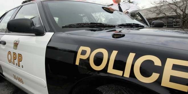 Indian-origin woman charged after Police Officer struck by car in Canada